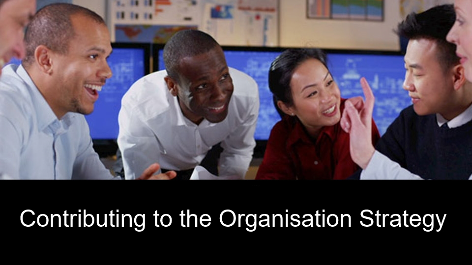 Contributing to the Organisation Strategy