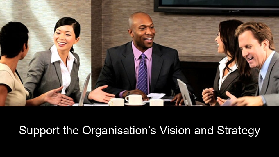 Support the Organisations Vision and Strategy